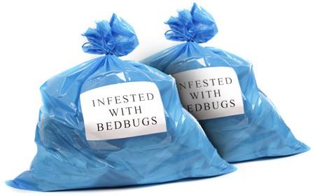 bedbug_bags