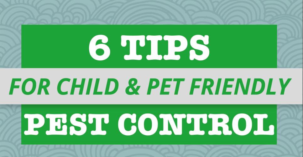 6 Tips for Child & Pet Friendly Pest Control